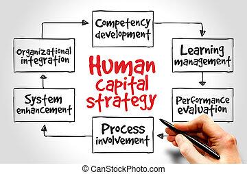 capitale, umano, strategia