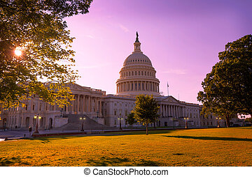 Capitol building Washington DC sunset garden US