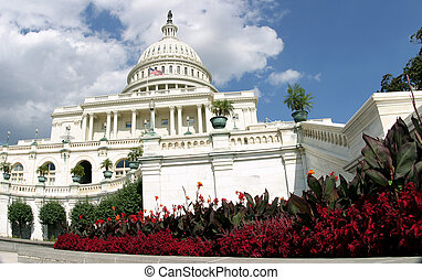 Capitol in Bloom - Flowers frame the U.S. Capitol in...