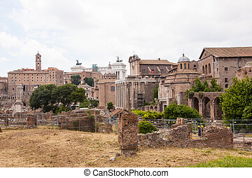 Capitoline Hill between the Forum and the Campus Martius, is...