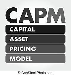 CAPM - Capital Asset Pricing Model acronym, business concept...