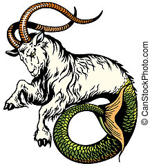 capricorn astrological zodiac sign