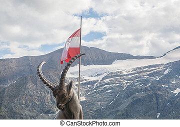 Capricorn in Austria