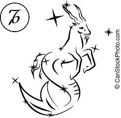 Capricorn - Lovely zodiac signs formed by stars on black...