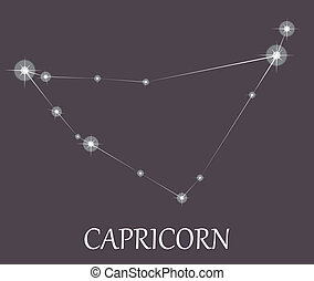 Capricorn Zodiac sign.