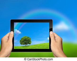 captura, a, paisagem natureza, com, tabuleta, computador