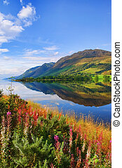 capture, de, vibrant, paysage nature