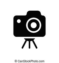 capture  glyph flat icon
