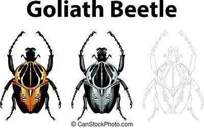 carácter, garabato, goliath, escarabajo