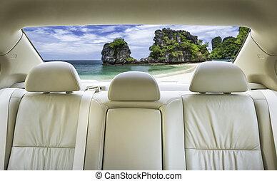 car., назад, сиденье