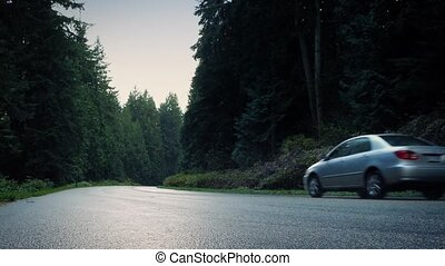Car And Pickup Pass On Forest Road