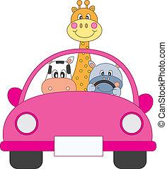 car, animais, dirigindo