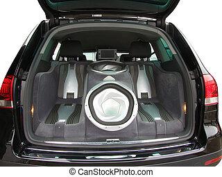 car audio system