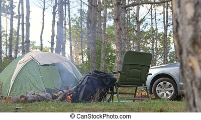 Car camping  - Traveling by car, camping in the woods