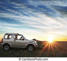 car on grassland