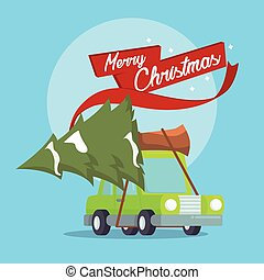 car carrying tree for christmas