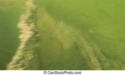 Car decomposing underwater shot in the Florida Keys