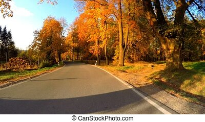 car drive in Autumn with fall colored trees