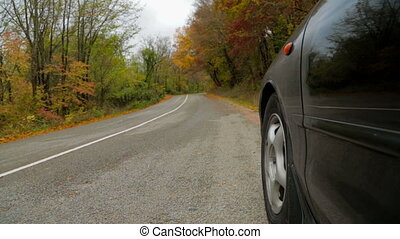Car Driving Along Road In Autumn Forest