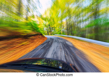 Car driving fast into forest