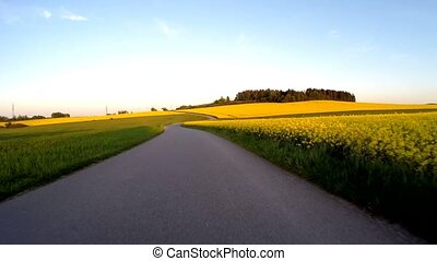 Car driving in spring countryside - Car driving in evening...
