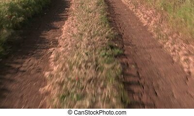 Car driving on dirt road through the field POV