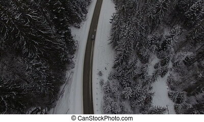 Car driving on winter country road in snowy forest, aerial view from drone