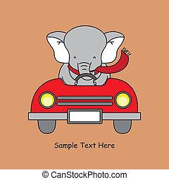 car, elefante