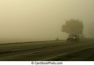 car, em, nevoeiro