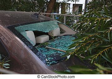 car, furacão, dano, cima, grande, quebrada, caiu, copo., fim, durante, mergulhador