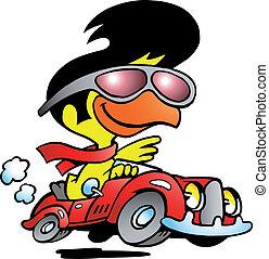 car, galinha, esperto, dirigindo, esportes