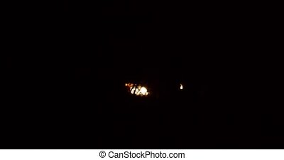 Car headlights ominously drive through a dark thick forest ...