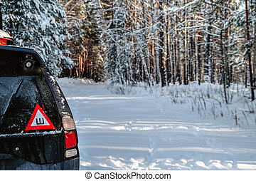 Car in the winter forest