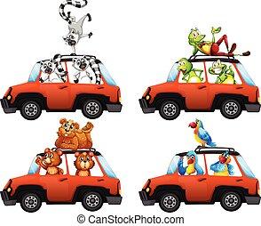 car, jogo, animais