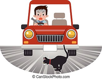 Car likely to attract the cat jumping out