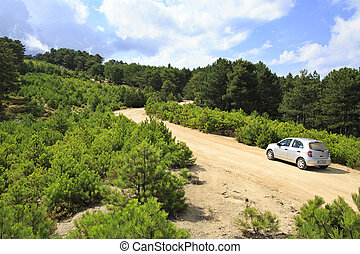 Car on a dirt road in the mountains.