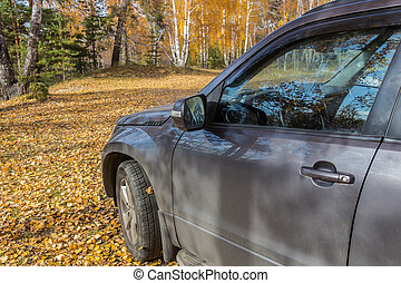 car on a glade in the autumn forest