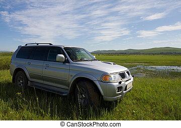 Car on a meadow