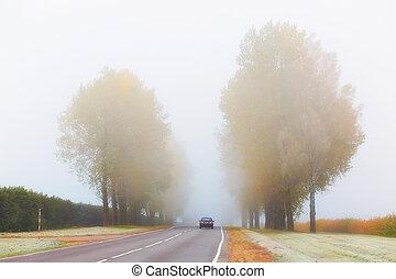 Car on foggy road