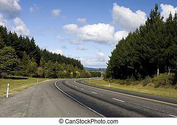 Car on Rural Highway in New Zealand