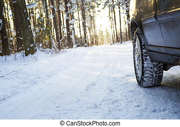 Car on the winter road in the wood.