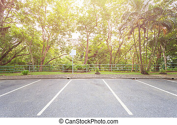 Car parking space in public the park surrounding by the tree
