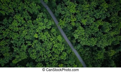 Car riding on the road. Bird's eye view