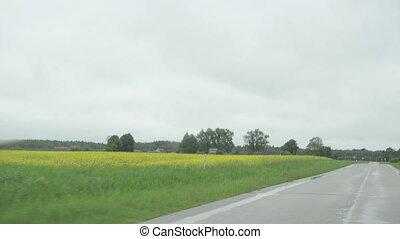 car rural road rain
