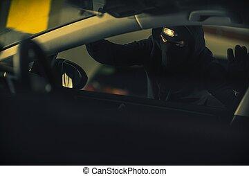 Car Thief Illegal Activity