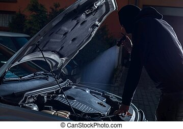 Car thief with flashlight disarming car protections