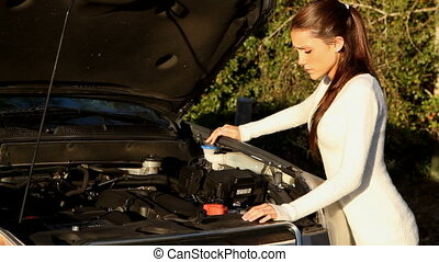 Car Trouble - Petite young woman looks around helplessly for...
