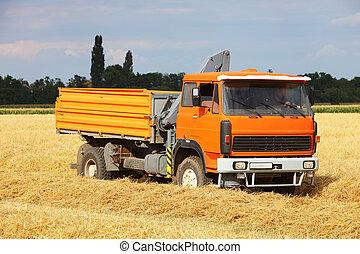 Car Truck on wheat field, harvesting