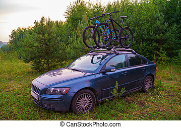 Car with bicycles in the forest