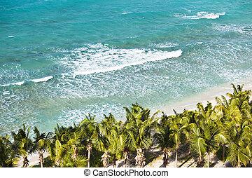 caraíbas, acima, praia, antigua
